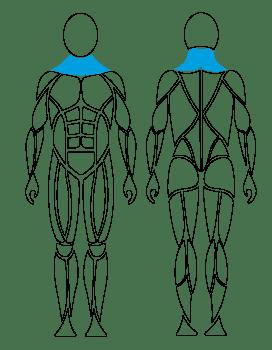 G140_Cervical-Extension_Lateral-Flexion-Kopie-01