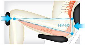 optimized biomechanics for safe physiotherapy training