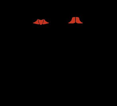 G140_Cervical-Extension_Lateral-Flexion