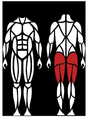 Muscle_Man_G260-1